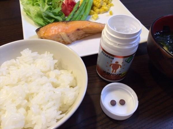 厚切り鮭とメタバリア2粒