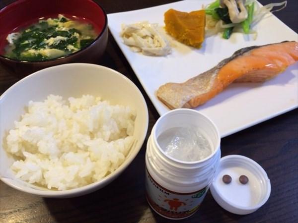 焼き鮭とご飯とメタバリア2粒