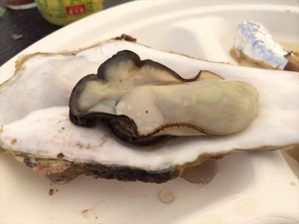 身が大きい牡蠣