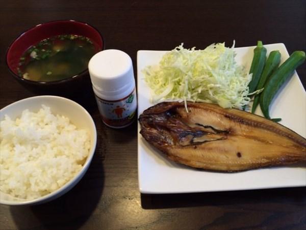 月曜日の朝食の魚とご飯とメタバリア