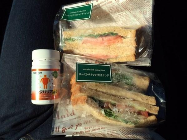 イオンのサンドイッチとメタバリア