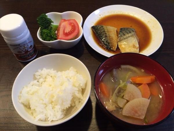 白ご飯とさば味噌とメタバリアスリム