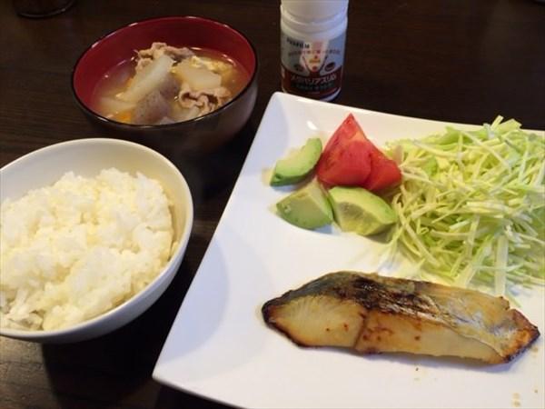 魚と豚汁とご飯とメタバリアスリム
