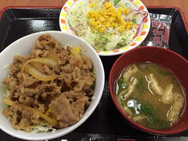 すき家の牛丼ライトと野菜サラダと味噌汁