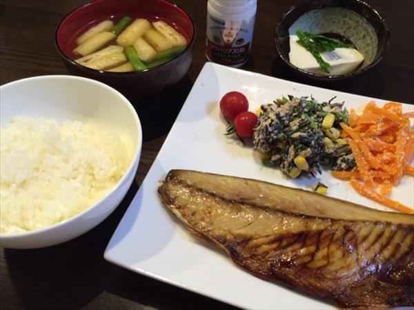 焼き鯖とご飯と味噌汁とメタバリアスリム