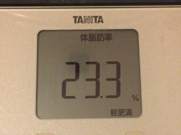シボヘール生活開始前の体脂肪率