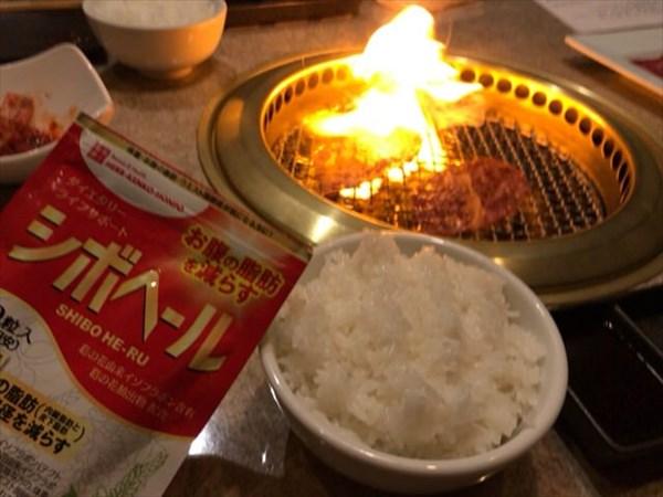 月曜日に食べた焼肉とシボヘール