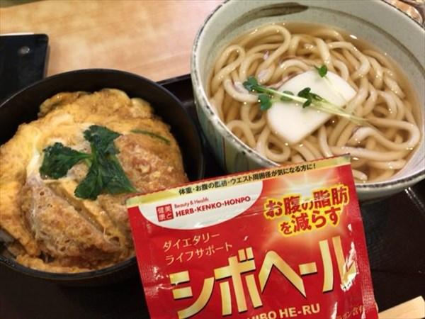 木曜日の昼に食べたカツ丼とうどんとシボヘール