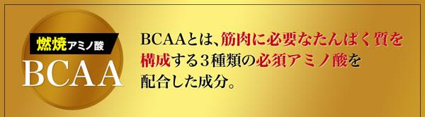 燃焼系 必須アミノ酸 BCAA
