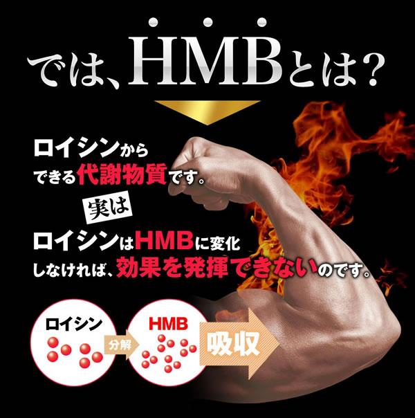 HMBはロイシンからできる代謝物質