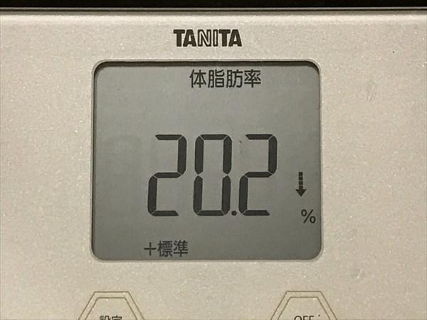 シボヘール生活12週目の体脂肪率